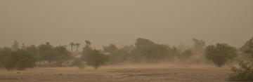 Sandstorm_again_01.jpg