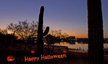 Halloween_2011.jpg