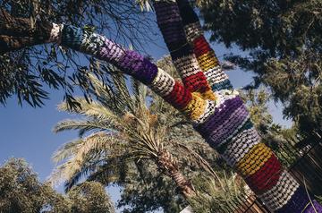 TreeSleeve 002-1.jpg