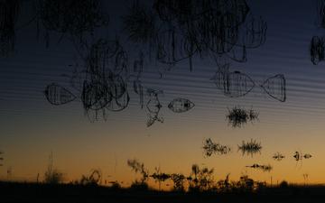 Reflection 009-1.jpg