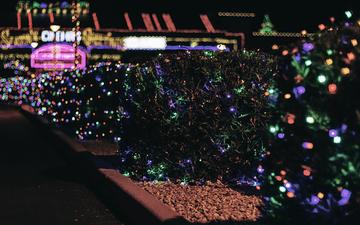 Lights 002.jpg