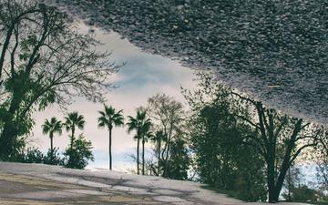 Reflections 003.jpg