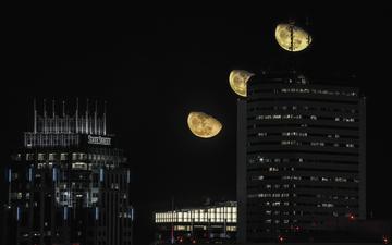 Bos2_Moon 008.jpg