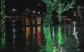 Rain I 024.jpg