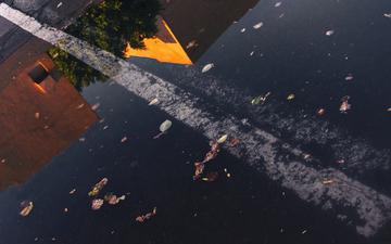Fall_rain 007-1.jpg