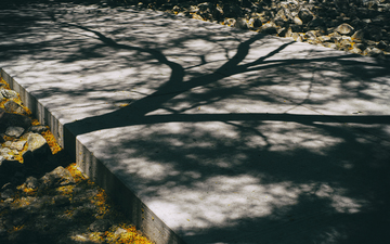 Shadows_on_Concrete_at_Noon_01.jpg