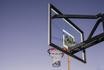 Tempe_in_November_Basketball_Court_Palm_tree_01.jpg