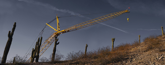 Saguaro_Cactus_Panorama_Construction_Crane_01_3k.jpg