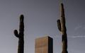 Saguaro_Construction_01.jpg