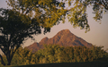 Steele_Indian_School_Park_Phoenix_Mountains_02.jpg