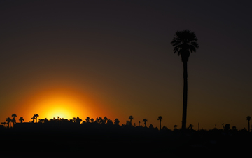 Steele_Indian_School_Park_Phoenix_Sunset_01.jpg