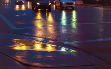 Rainy_January_Tempe_Streets_Fields_of_Gold.jpg