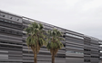 Tempe_ASU_College_Avenue_Architecture_Colors_Metal_Winter_Palm_Tree.jpg