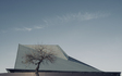 Tempe_Center_for_the_Arts_Winter_Tree_Cloud_Afternoon.jpg