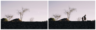Tempe_Rio_Salado_January_Afternoon_Walking_the_Dog_Diptych.jpg