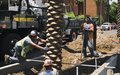 Palm_Tree_Planting_with_Crane_Straighten_01.jpg