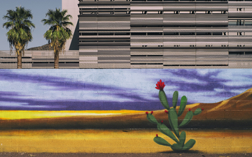 Downtown_Tempe_Desert_Mural_2_Palm_trees_Cactus_Building.jpg