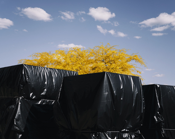 Crates_wrapped_black_plastic_yellow_tree_clouds_pandemic_covid-19.jpg