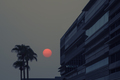 Wildfire_Sun_over_Downtown_Tempe_Palm_Trees_1.jpg