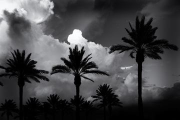 Colorless_Desert_Summer_Cloud_Impression.jpg